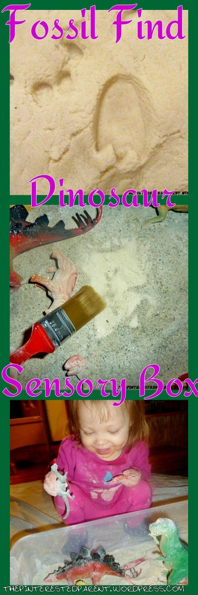 Dinosaur & Fossil Finding Sensory Box